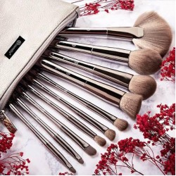Bh 10pcs makeup brush pack