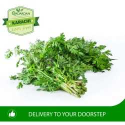 Fresh Coriander (Dhania) Bunch of 4